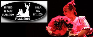 Pilar Soto - Flamenco Courses in M�laga