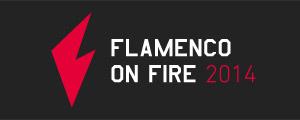 Flamenco On Fire - Festival de Flamenco de Pamplona