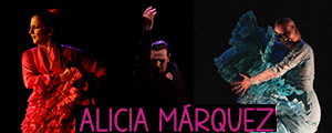 Estudio Flamenco Alicia M�rquez - Cursos Julio