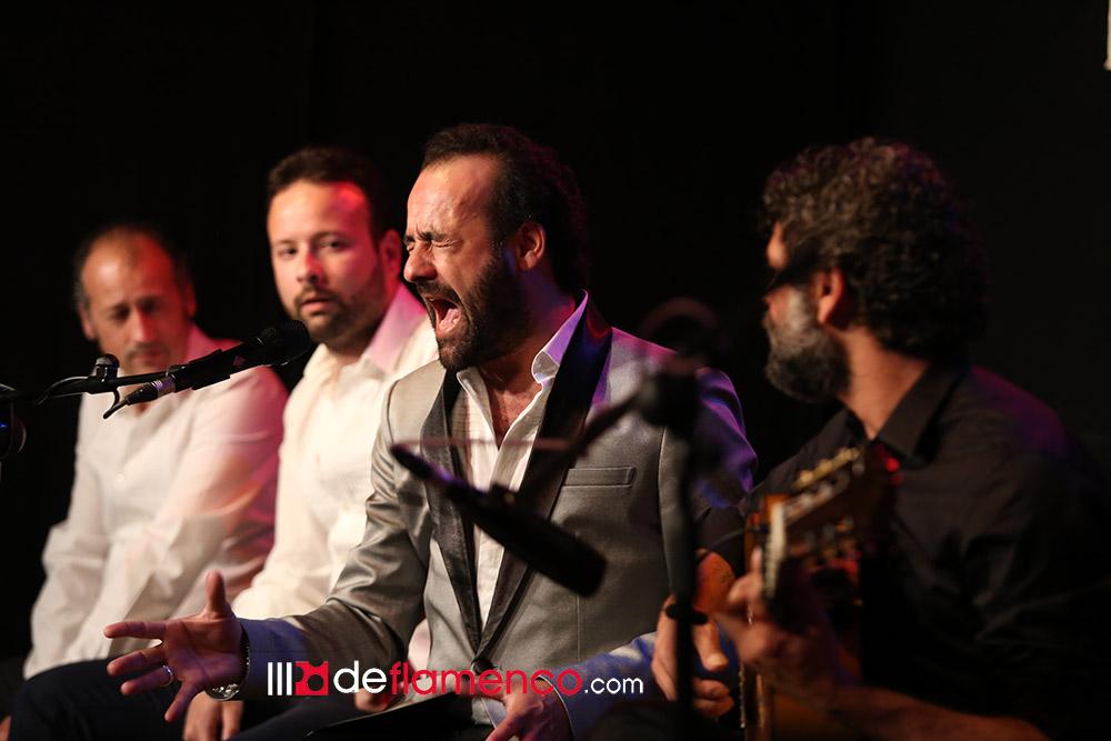 José Canela - Circulo Flamenco Madrid