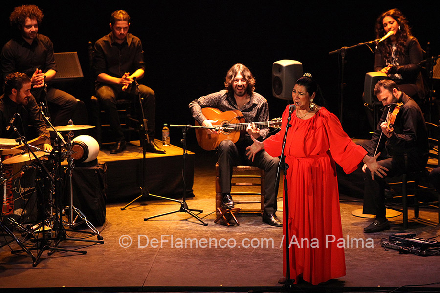 Juan Requena, Festival de Jerez