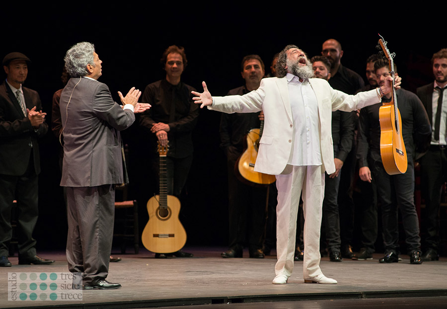 Homenaje a Curro Fernández - Manuel Molina