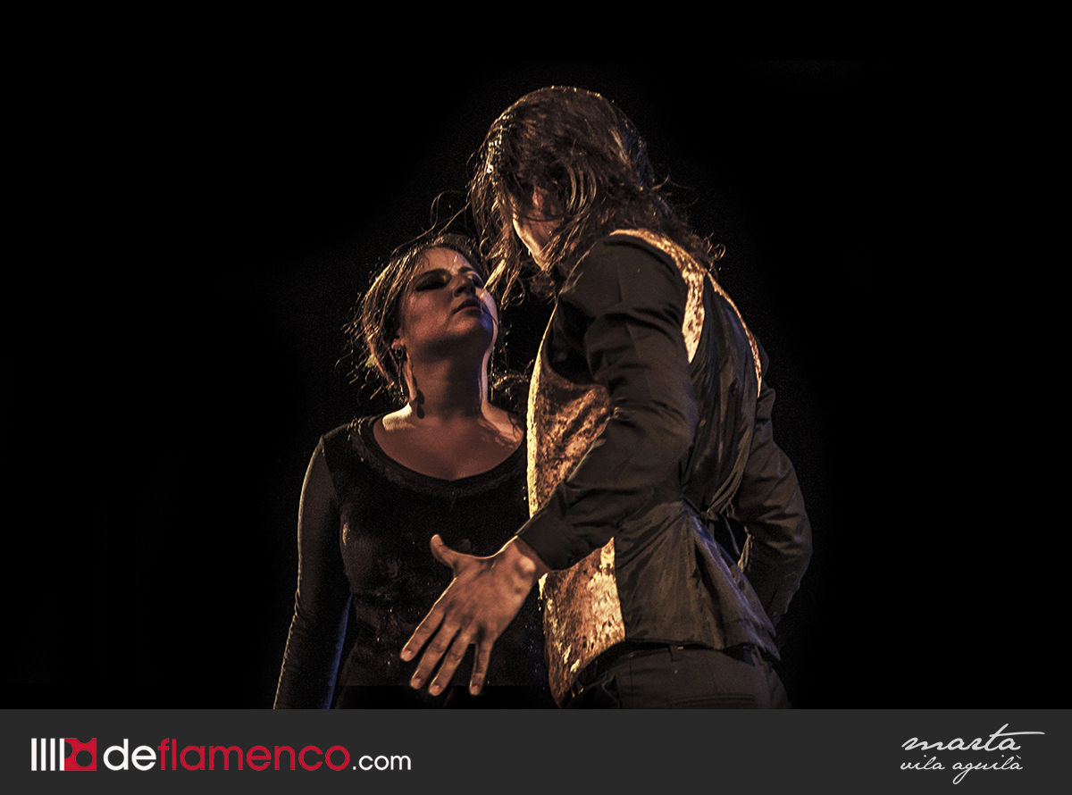 promesas flamenco mont de marsan fotograf 237 as