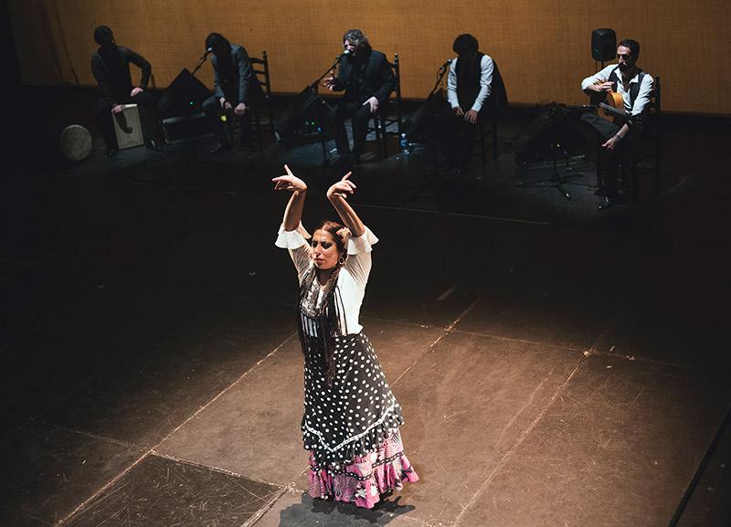 Málaga en Flamenco - Moneta
