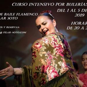Intensivos de Flamenco Pilar Soto - Bulerias