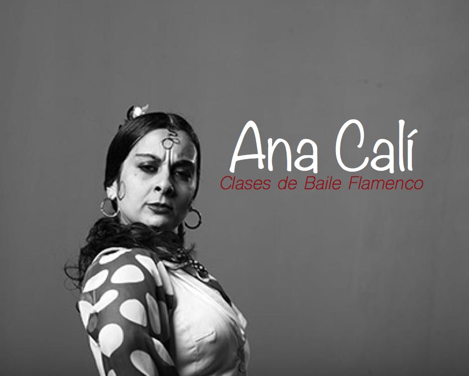 Clases de Baile Flamenco Ana Calí