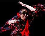 El Festival alza el telón con '¡Viva Jerez!', un recorrido por el corazón del flamenco