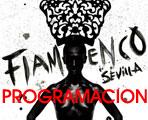 XV Bienal de Flamenco de Sevilla 2008. Programación