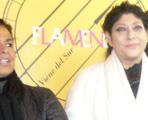 Programación del ciclo Flamenco Viene del Sur 2009.