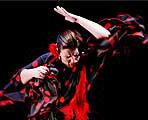 María del Mar Moreno se inspira y rinde homenaje al cante en su nuevo espectáculo