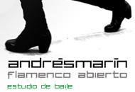Andrés Marín Flamenco Abierto