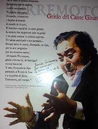 Asociacion Cultural Flamenca Fernando Terremoto