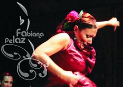 Flamenco y Danza Española en Rosario