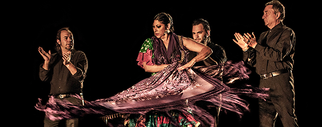 Festival Flamenco on Fire 2015 de Pamplona