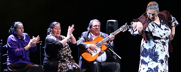 """Memoria"" The serenity of the memory of flamenco"