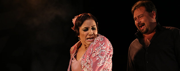 Eva Yerbabuena opens the series of shows at the Festival de La Unión
