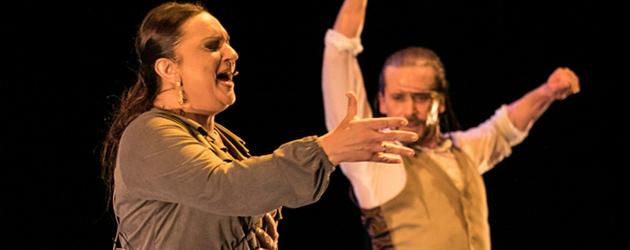Alfonso Losa, a flamenco dancer in transition