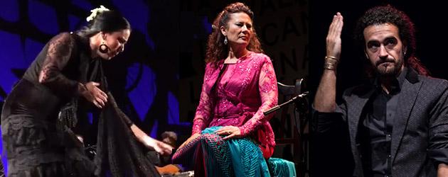 El Cante de las Minas corona a  Antonia Contreras, Belén López y Alfonso Aroca