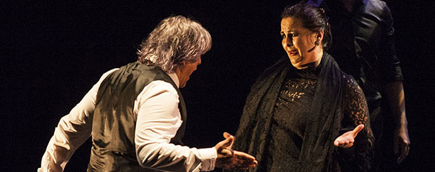 Flamenco in the family highlights the Jerez identity