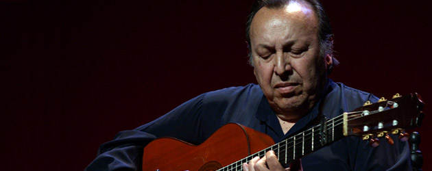 Paco Cepero, awarded the Compás del Cante 2014