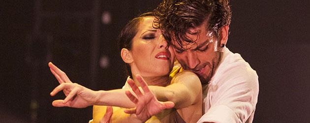 El flamenco generoso de David Coria pone al público de Jerez en pie