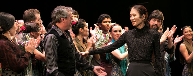 The shared language of the flamenco U.N.