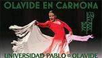 El compás del baile, flamenco, historia, evolución y realidad