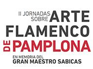 II Jornadas sobre Arte Flamenco de Pamplona