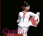 Flamenco en Taiwán