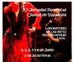X Jornadas Flamencas de Valladolid. Junio 2013
