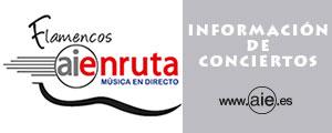 Flamencos AIEnRuta