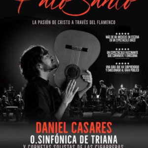 Daniel Casares Palosanto (Madrid)