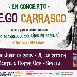 Diego Carrasco - Cartuja Center