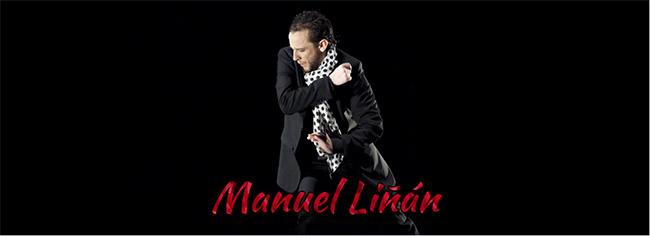 Manuel Liñán