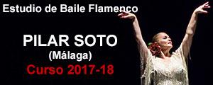 Escuela de Flamenco Pilar Soto de Málaga