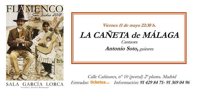 Tarjeta Cañeta de Málaga - San Isidro Flamenco