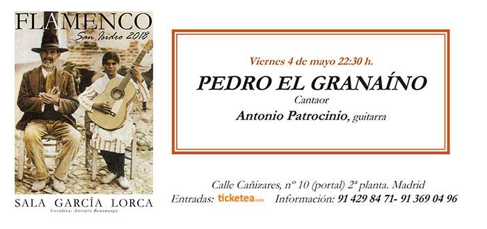 Tarjeta Pedro El Granaíno - San Isidro Flamenco 2018