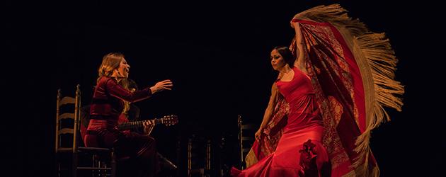 Flamencos en Nueva York