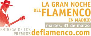 La gran noche del flamenco en Madrid. Raimundo Amador / Entrega de Premios DeFlamenco.com 2009