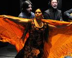 Galeria fotográfica – XVI Festival de Jerez – Fuensanta La Moneta 'Extremo jondo' – Antonio Rey