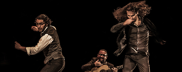 """Farruquito """"Improvisao"""" – Flamenco on Fire –  Galería fotográfica"""