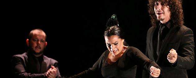 Horizonte, Adela Campallo & Rafael Campallo. Fotos & videos