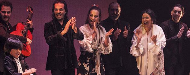 Farruquito «Baile moreno» – Festival de Jerez, fotografías