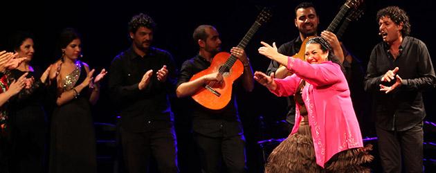 Fiesta en Lebrija. Fotos & video. Bienal de Flamenco