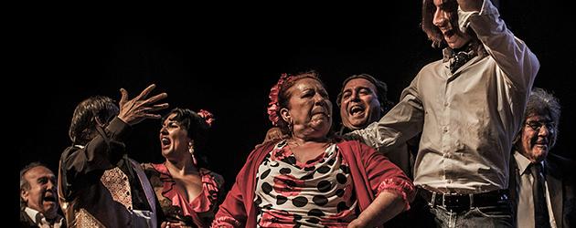Toda una vida – Mont de Marsan – Galeria fotográfica