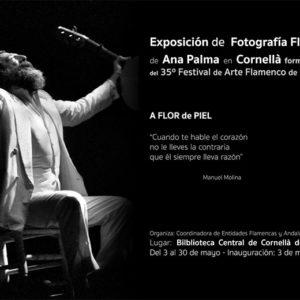 Ana Palma - Exposición Cornellà