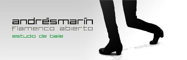 Andrés Marín - Estudio Abierto