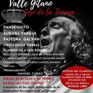 II Festival Valle Gitano