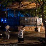 Fiesta de la Buleria Jerez con Japón
