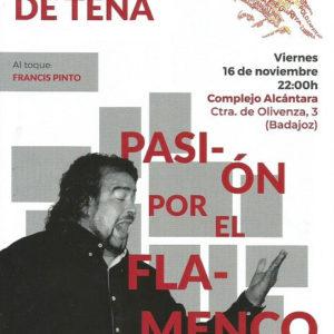 Miguel de Tena Pasión por el Flamenco